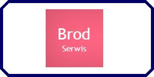 Brodserwis